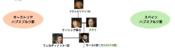 ハプスブルク家 家系図