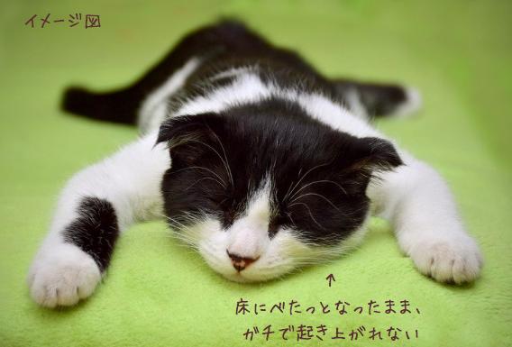 【なぜ鬱病になると、ひたすら寝るのか】原因と思われる3つのこと