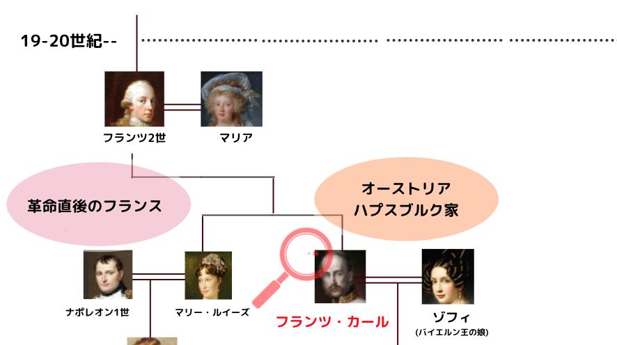 ナポレオン 家系図