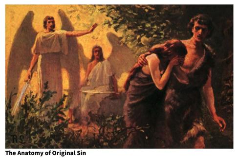 The Anatomy of Original Sin